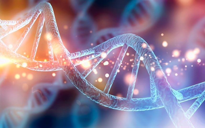 adn-estudios-geneticos