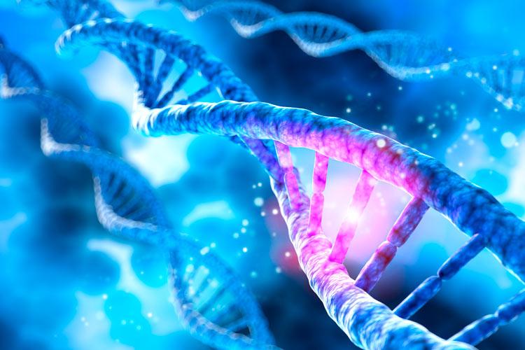 genetica-analisis